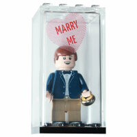 Custom Minifigur Heiratsantrag - marry me, Minivitrine